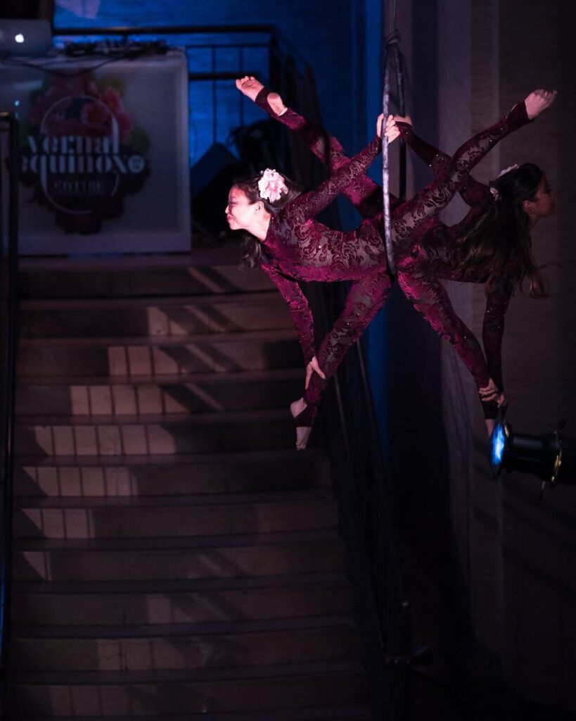 Circus Party Entertainer - Allseated Event