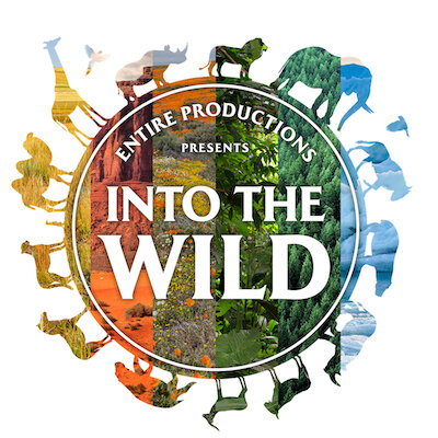 Into thewild - Entire Productions